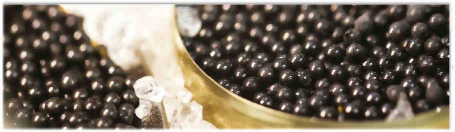 Caviar-aquitaine-bandeau-caviar